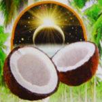 Органическое нерафинированное кокосовое масло первого холодного отжима (Organic unrefined extra virgin coconut oil)